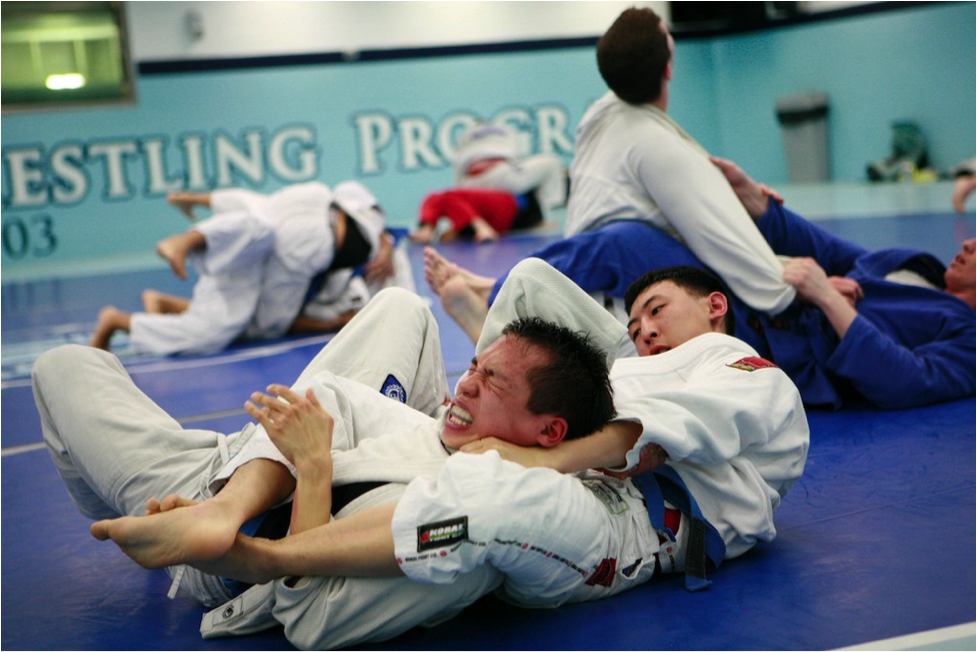 Can you learn BJJ at home? - BJJPassion