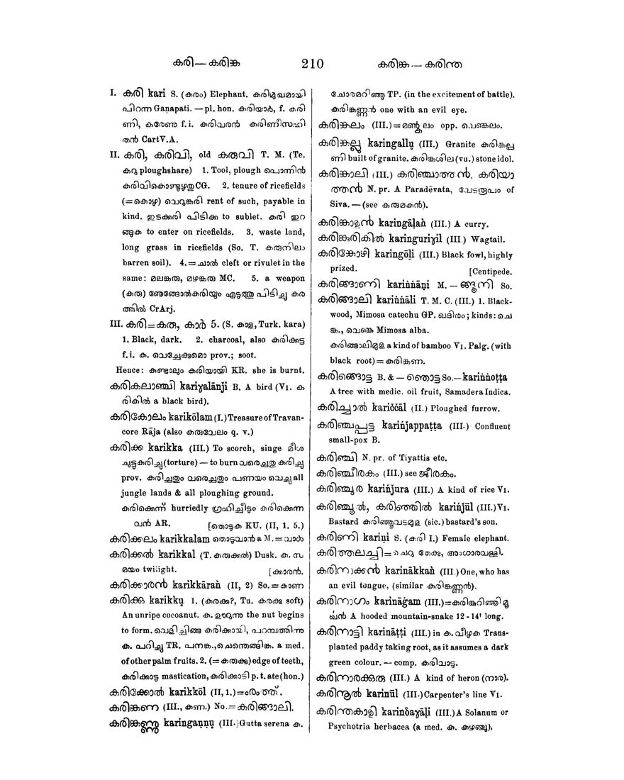 flirting meaning in malayalam language dictionary english dictionary