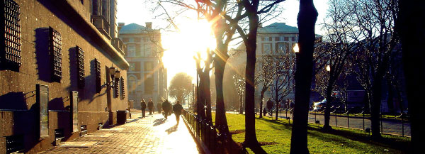 The sun shines on College Walk