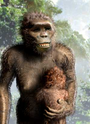 The Genus Australopithecus