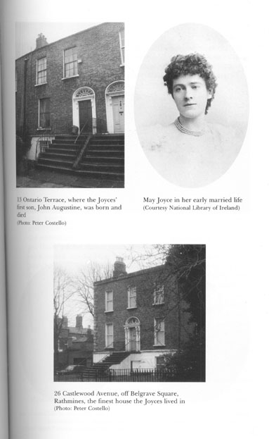epiphanies in james joyces the dead This six-page undergraduate paper discusses james joyce's use of epiphanies in dubliners, most specifically in eveline, araby, and the dead, and analyzes how these.