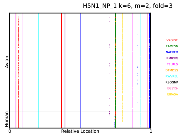 H5n1 Np 1 K 6 M 2