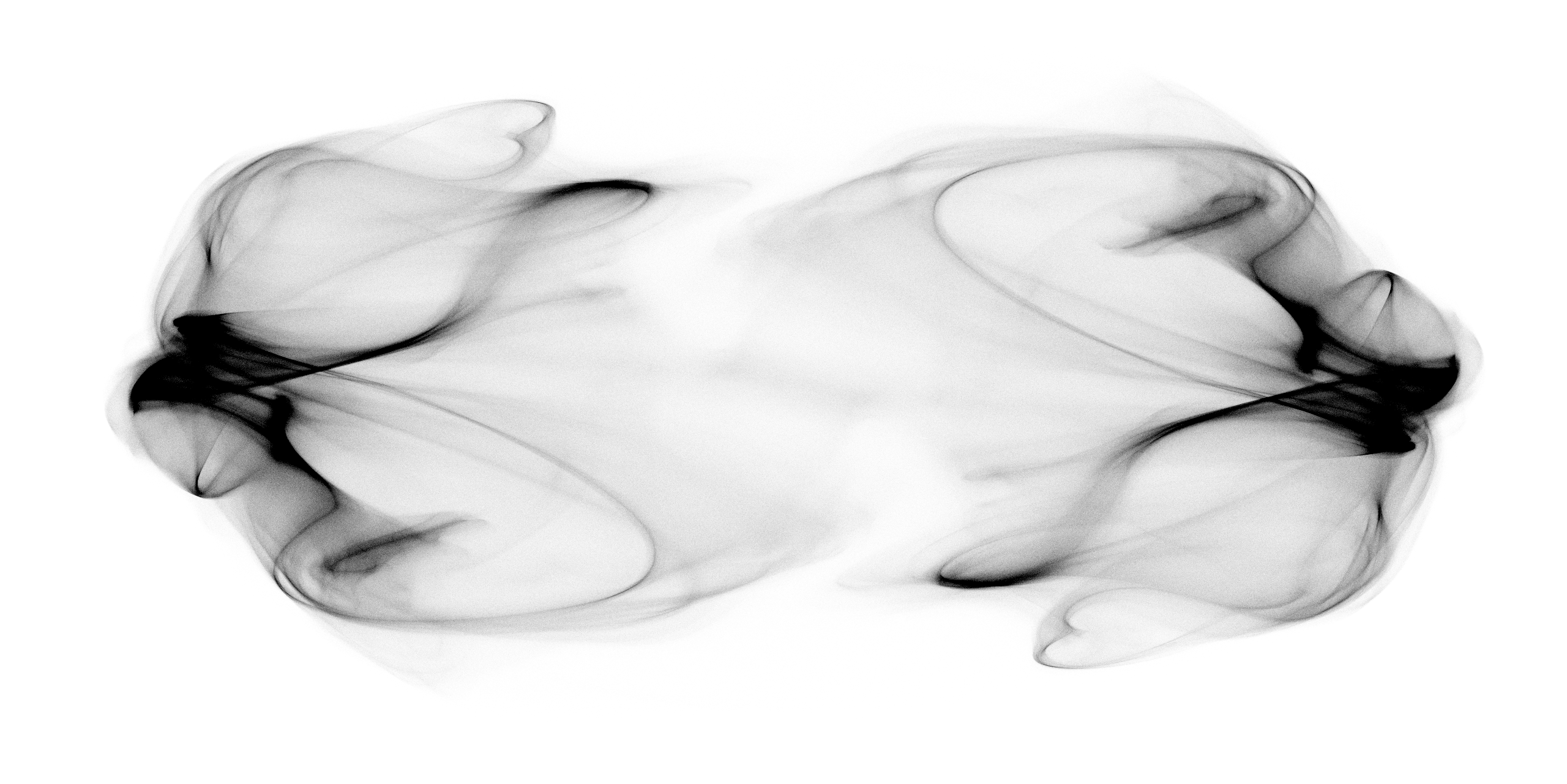 visualization of low-dimensional attractor of chaotic firing-rate network by Rainer Engelken