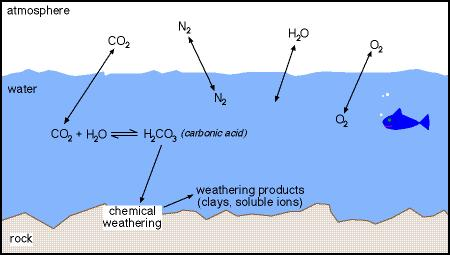 Carbon Cycle and the Earth's Climate