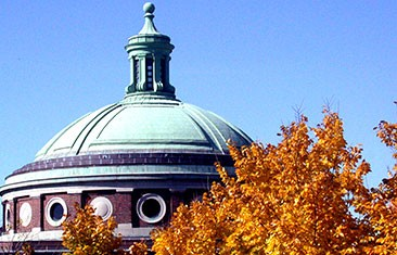 Autumn leaves frame the copper dome of a round, brick building