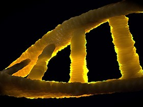 A twisting helix of DNA stands in bright yellow relief against a black background